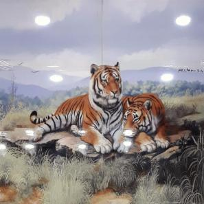 Bijeshwori bathroom wall tiles Tiger Poster